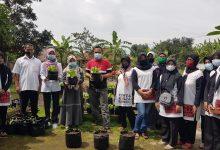 Photo of Deni Ajak Ibu-ibu Tanam Cabe di Pekarangan Rumah Untuk Ketahanan Pangan Keluarga